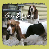 Gus & Lucy